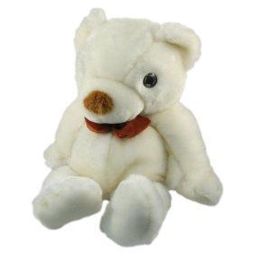 Teddy bear spy cam